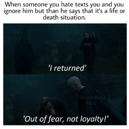 harrypotter meme memes