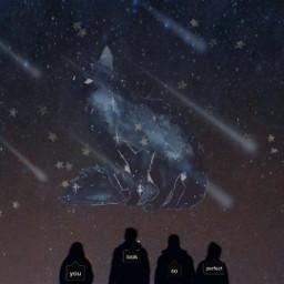 freetoedit cat stars group starrysky srccallout callout
