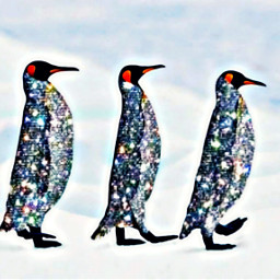 freetoedit fantasyart doubleexposure penguins friends
