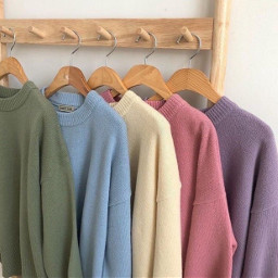 sweatshirt colors colourful cutie