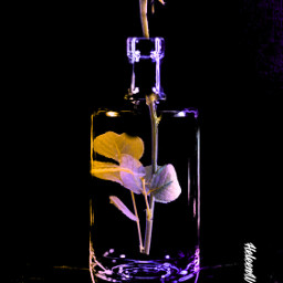 glitch fantasyart bottle flower imagination freetoedit