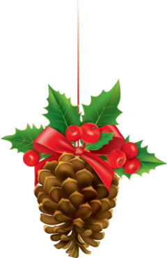 pinecone nature brown christmas decoration freetoedit scpinecone
