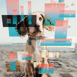 freetoedit dogday°•°•°apps: dogday