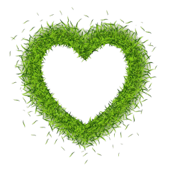 grass heart green freetoedit stickers