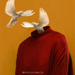 freetoedit birds myedit art myart