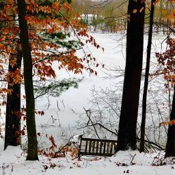 feeling serenity bench snow lake