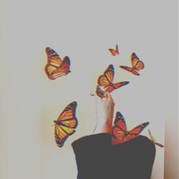 freetoedit madewithpicsart lights butterflies hand