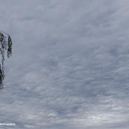 freetoedit followme skyandclouds sky skyblue