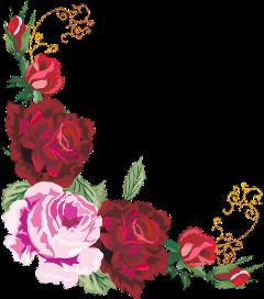 flowers wedding rose redrose freetoedit
