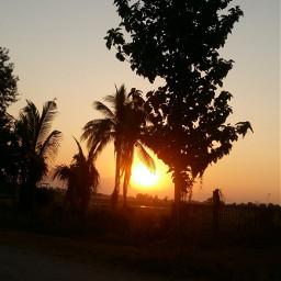 freetoedit mystyle styles photography sunset