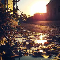 sunrise alleyway lane gutter kerb