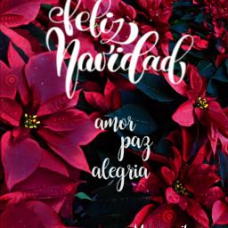 feliznavidad merrychristmas christmas christmaswishes amor