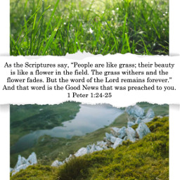 freetoedit grass beauty forever wordofgod