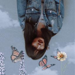 freetoedit upsidedown flipped butterflies aesthetic