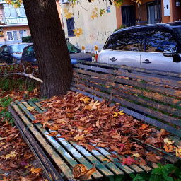 myfoto myedit autumncolors mycity napoli freetoedit