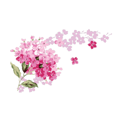 freetoedit pink flowers