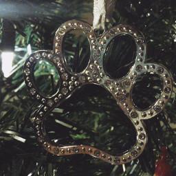 ornament paw swarovskicrystals iloveit