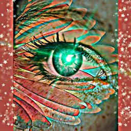 freetoedit eye remixed lensflare stars ircmagiceye magiceye