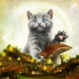 freetoedit nature kitten cat cute
