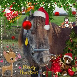 freetoedit horses merrychristmas