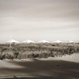 minimalism simplicity serenity sepia tents freetoedit