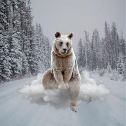 freetoedit urso clauds christmas ice