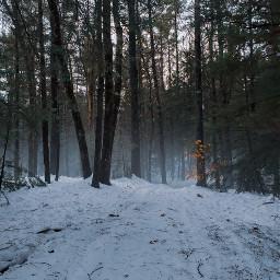 pcnature adventure trails seasons winter