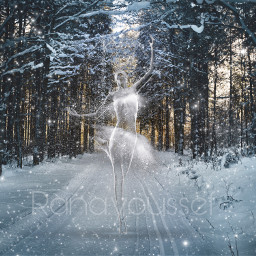 freetoedit snow winter photography forest