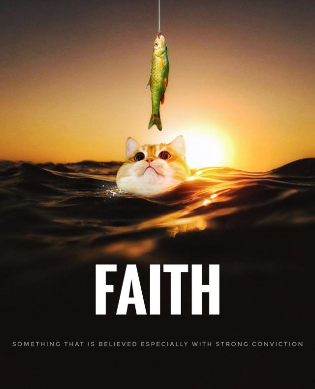 #freetoedit #fishing #sun #faith #words #water #cat  Op from Instagram.