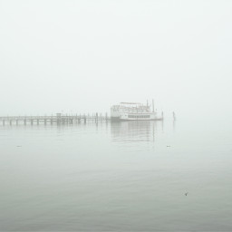 foggy day photo session port freetoedit