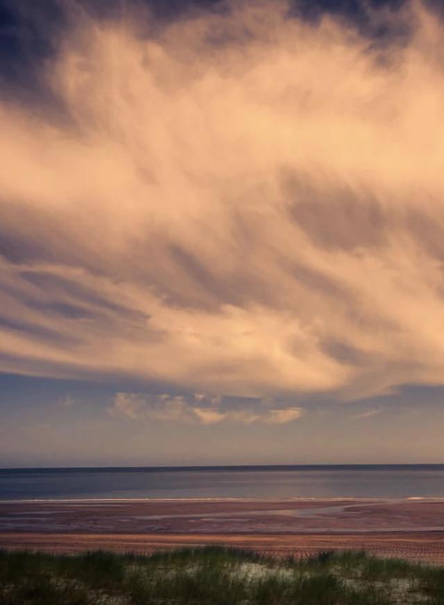 #nature #lateafternoon #beachview #grassdunes #horizon #bigsky #skyandclouds #beautifulclouds #goldenlight #natureporn #beachphotography   #freetoedit