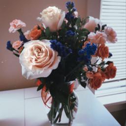 art flowers photography freetoedit
