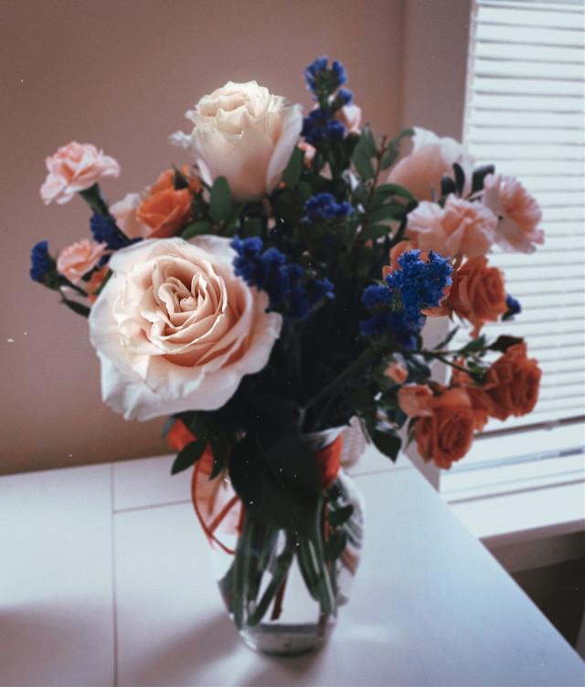 You are beautiful.  #art #flowers #photography #freetoedit