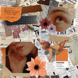 aesthetic aesthetictumblr aestheticflower flower paintflower freetoedit