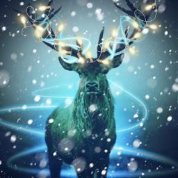 deerseason reindeerantlers freetoedit