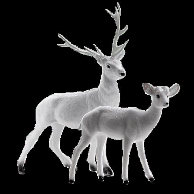 #ftestickers #stickers #whitedeer #deer #winter #freetoedit