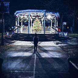 christmas christmaslights son park christmastree