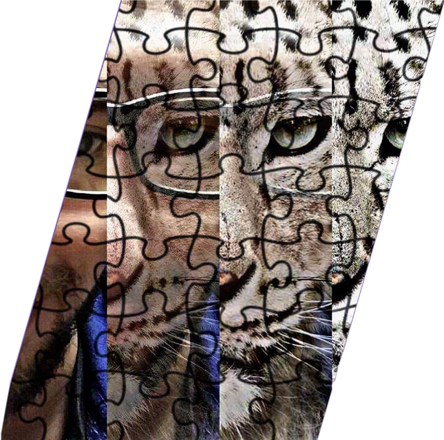 #puzzle #myson #kevie #silly #love #freetoedit