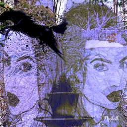 freetoedit remix bushes tree faces