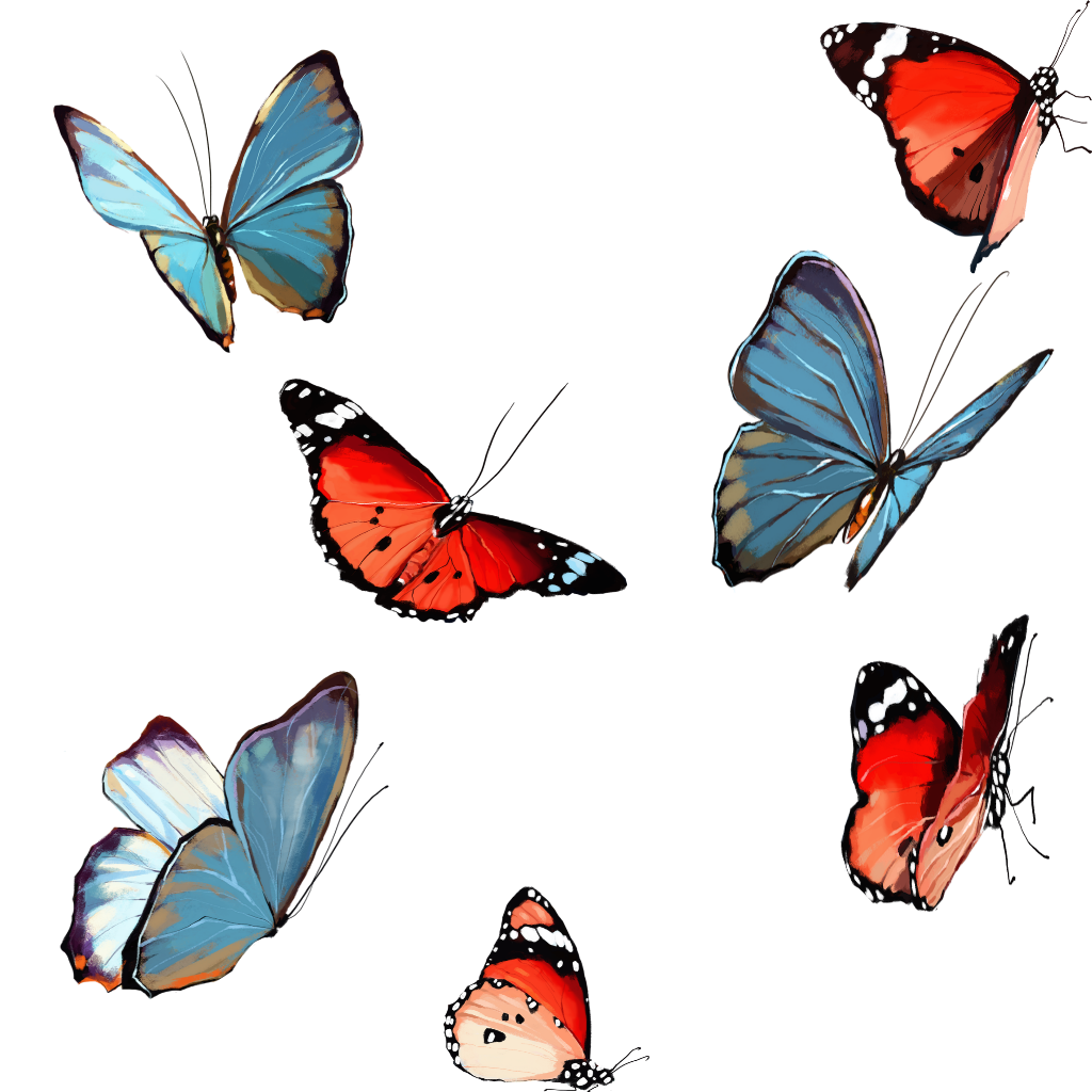 #mariposas #butterfly #freetoedit