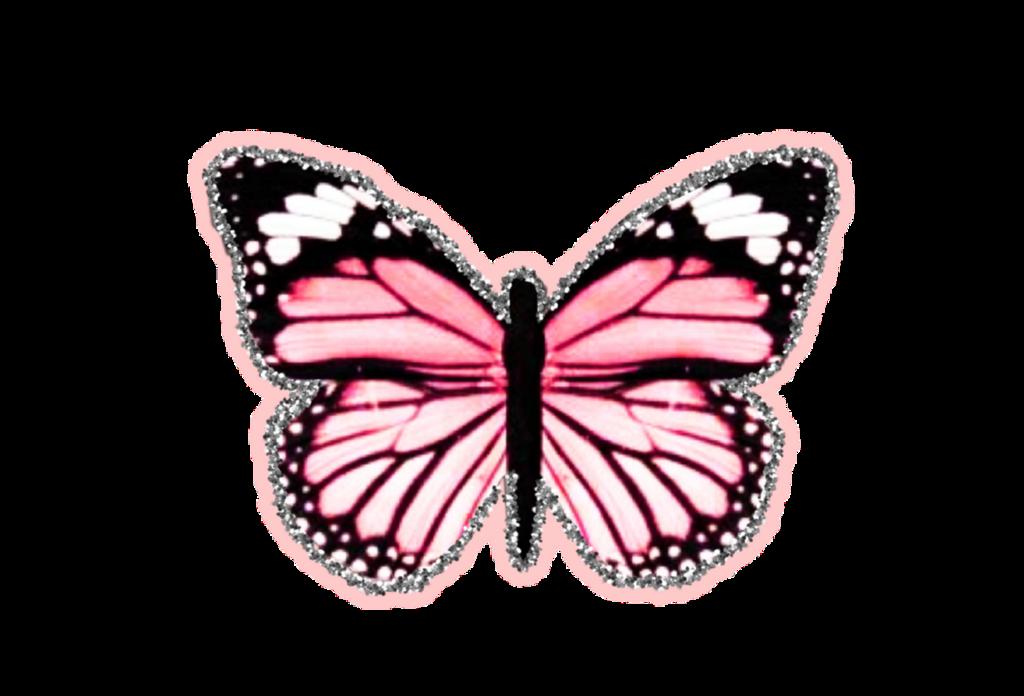 #freetoedit #butterfly