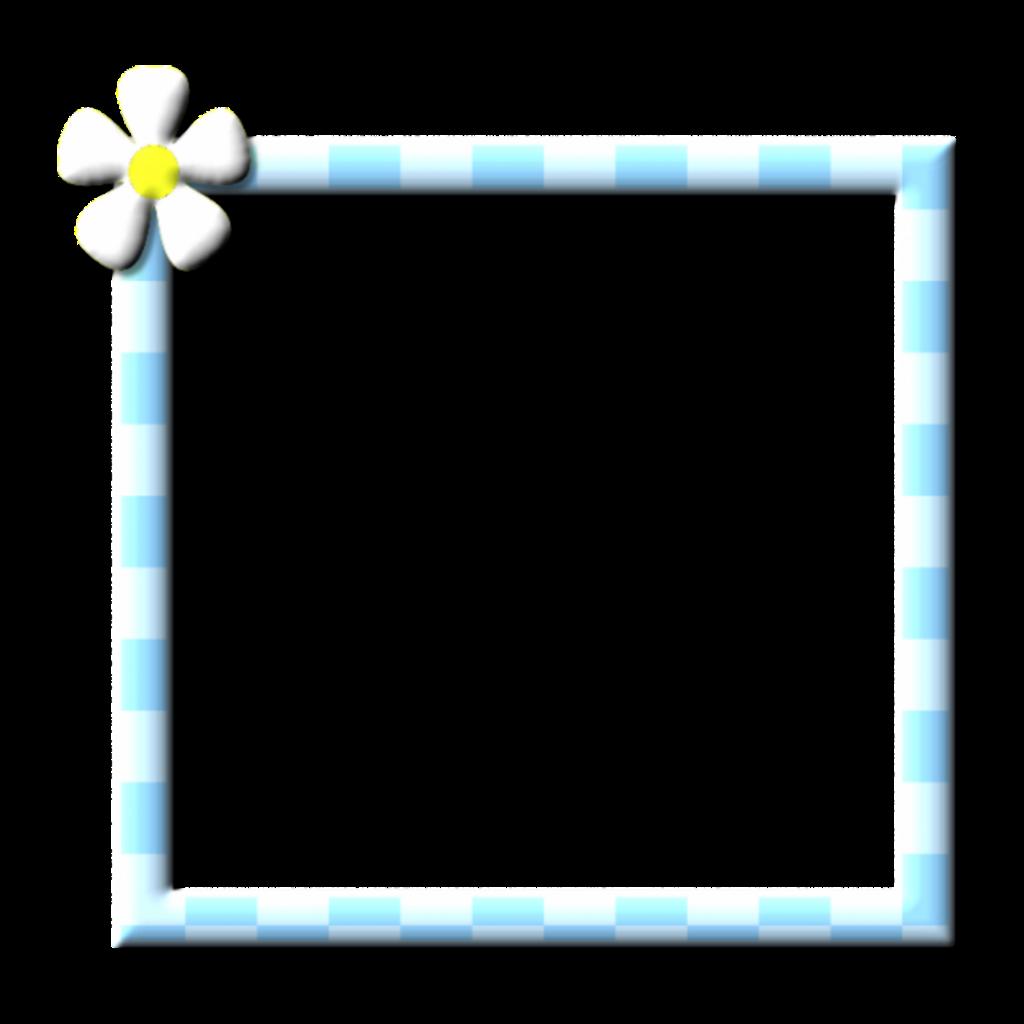 #frame #flower