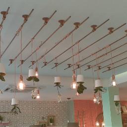 freetoedit lamps lights