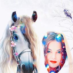 pony horse woman lady girl fcholidaymood freetoedit
