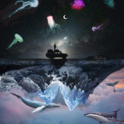 freetoedit jellyfish whales clouds galaxy