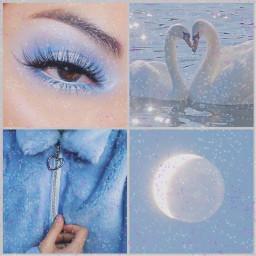 freetoedit blue blueaesthetic swan moonlight