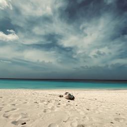 summer beach beachlife