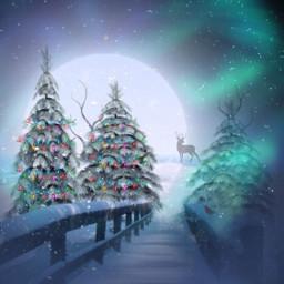 freetoedit winterforest srcfestivelights festivelights