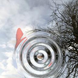 water fish wish freetoedit