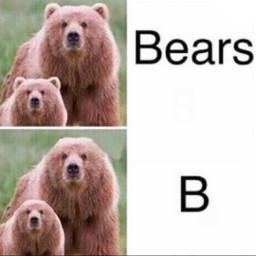freetoedit meme bears ears bear